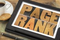 Article vs. Category Page Rankings: Which Should You Focus On?