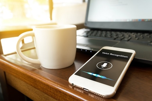 Trends in Voice Search to Watch for in 2020 in San Diego, CA
