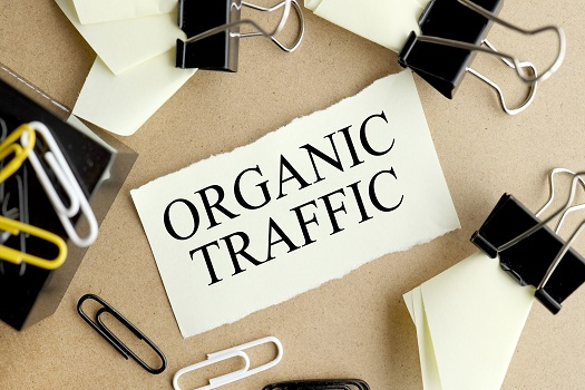 Troubleshooting Organic Search Traffic in San Diego, CA