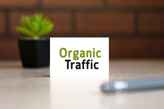 Effective SEO Techniques To Drive Organic Traffic In 2021 in San Diego, CA